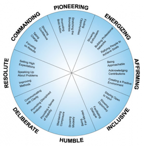 8 dimensions of leadership map
