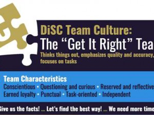 DiSC C group culture