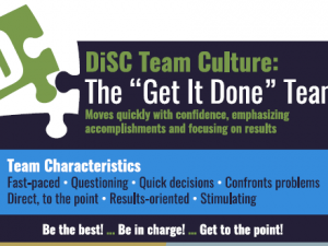 DiSC D group culture