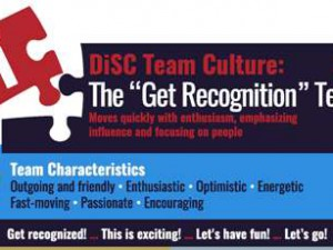 DiSC i group culture