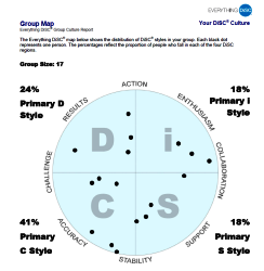 DiSC group report