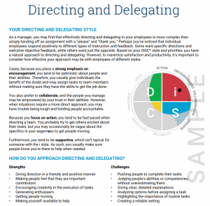 Your directing and delegating style