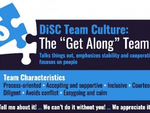DiSC S group culture
