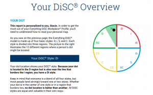 Your DiSC Overview (Di style)