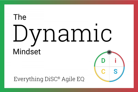 The Dynamic mindset in Agile EQ
